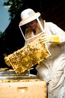 July 18, 2013 - Best Bees - 003