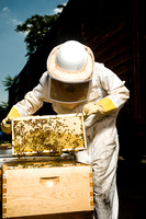July 18, 2013 - Best Bees - 002