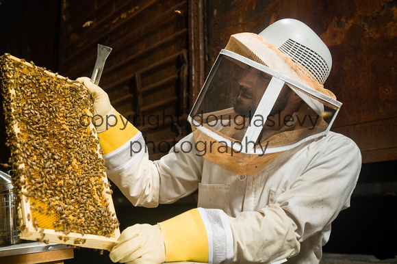July 18, 2013 - Best Bees - 017