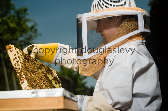 July 18, 2013 - Best Bees - 026