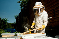 July 18, 2013 - Best Bees - 012